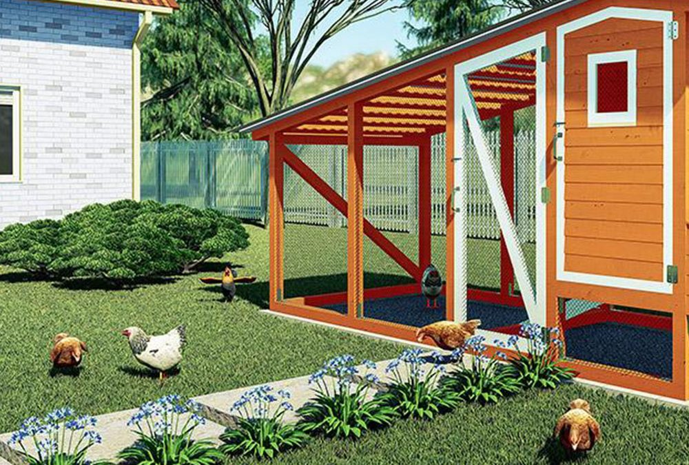 Building A Chicken Coop: Tips On Picking The Right Plan