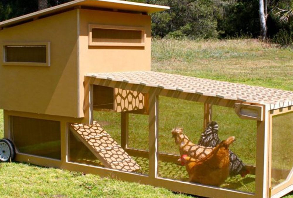 Portable Chicken Coops – Things to Consider