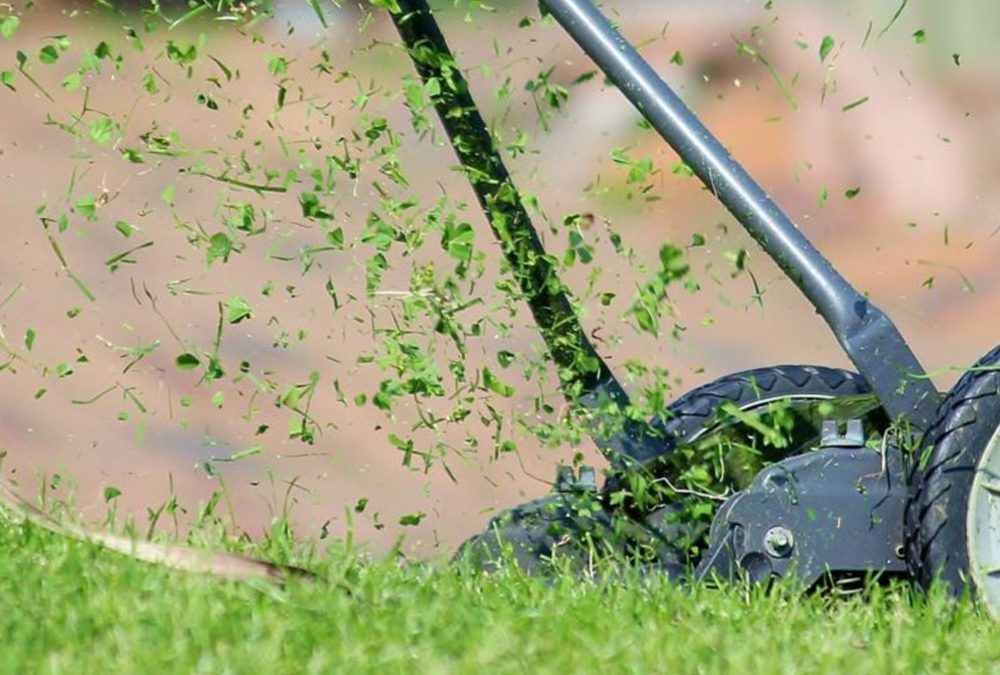 Lawn Care: Prepping Your Grass For Winter