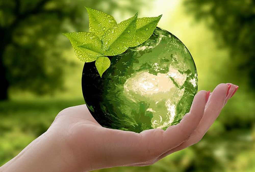 Tips To A Greener Lifestyle