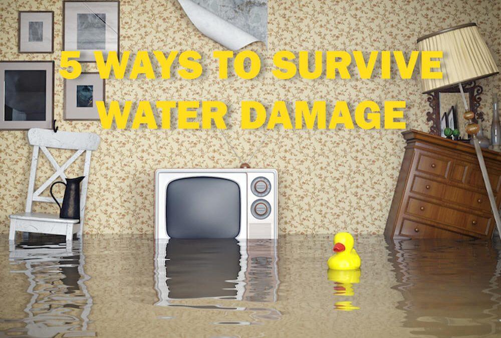 Five Ways to Survive Water Damage