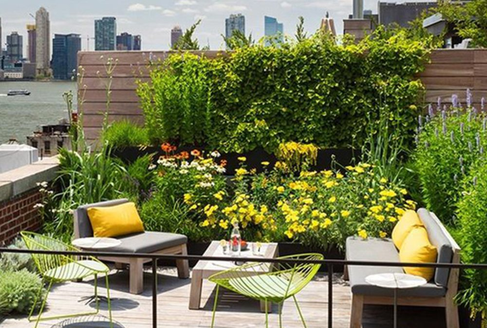 A Short History of Roof Gardens