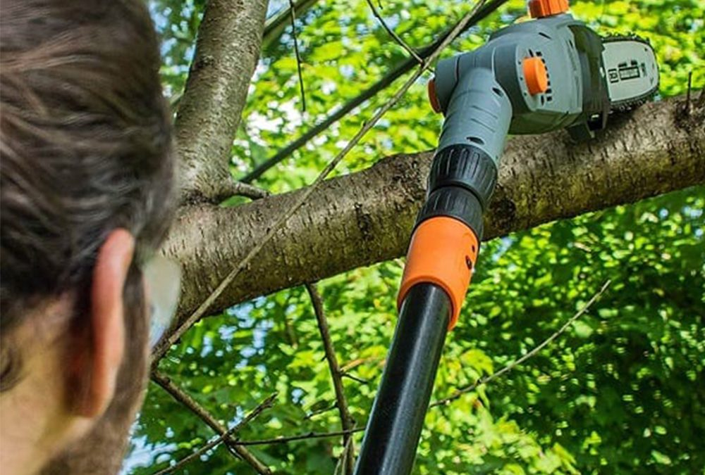 How to Choose the Perfect Pole Chain Saw