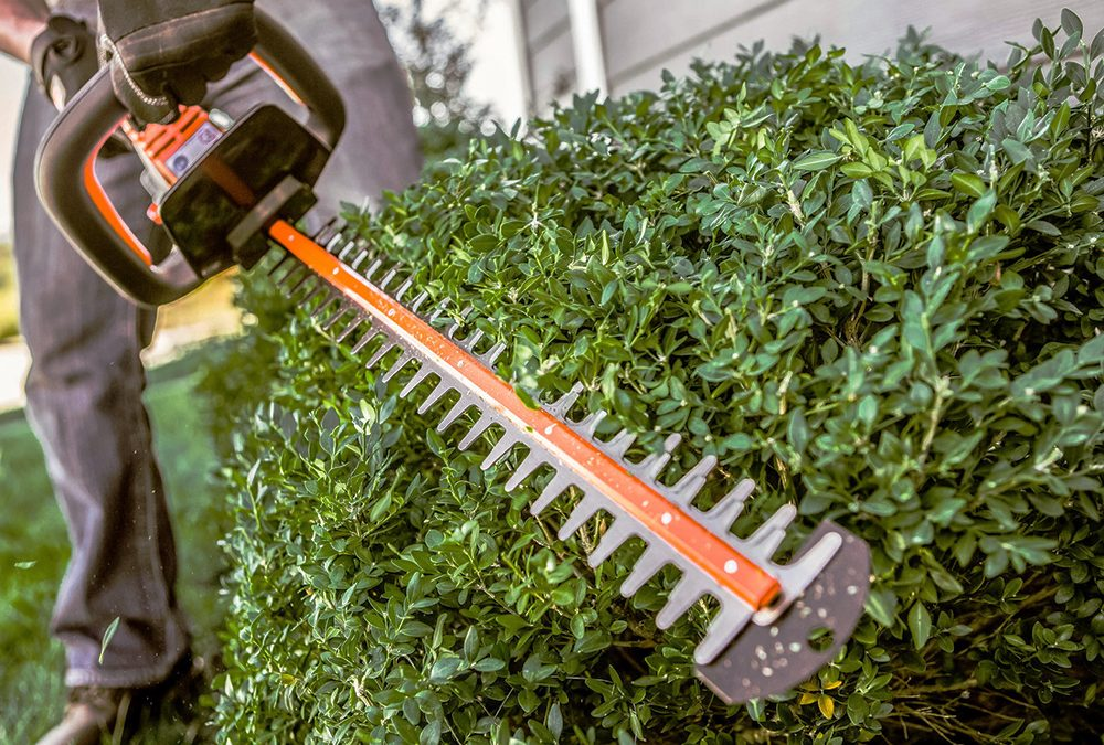 How To Use Hedge Trimmers