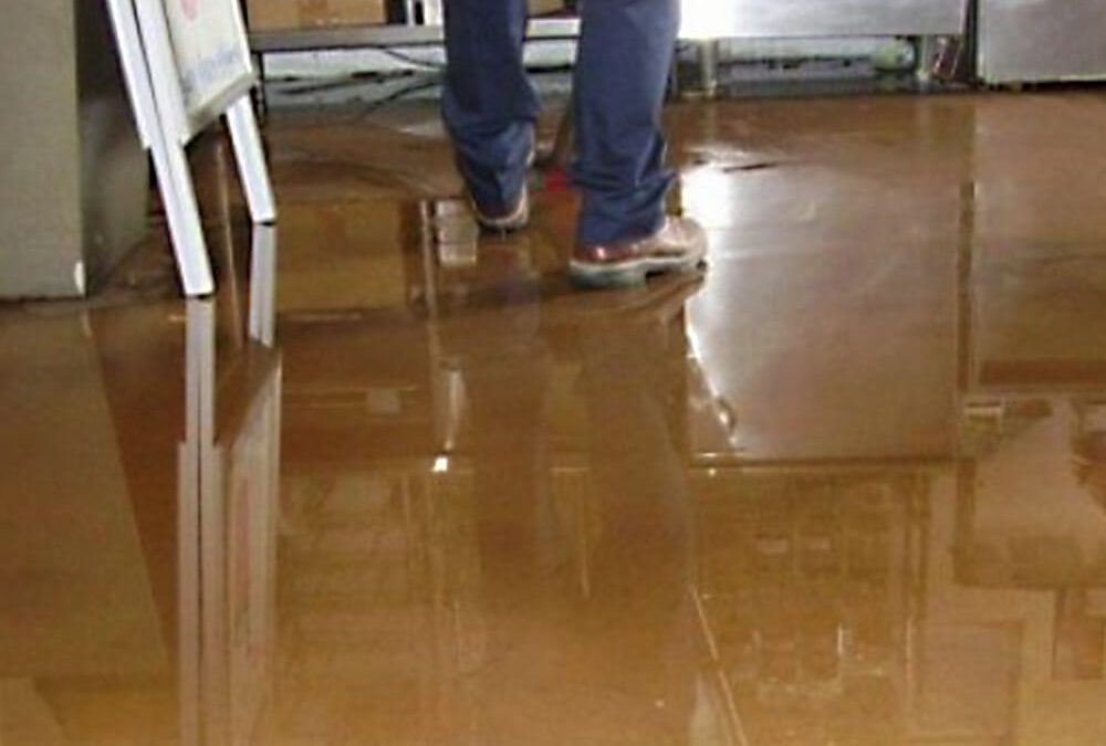 Signs of a Water Damaged Basement