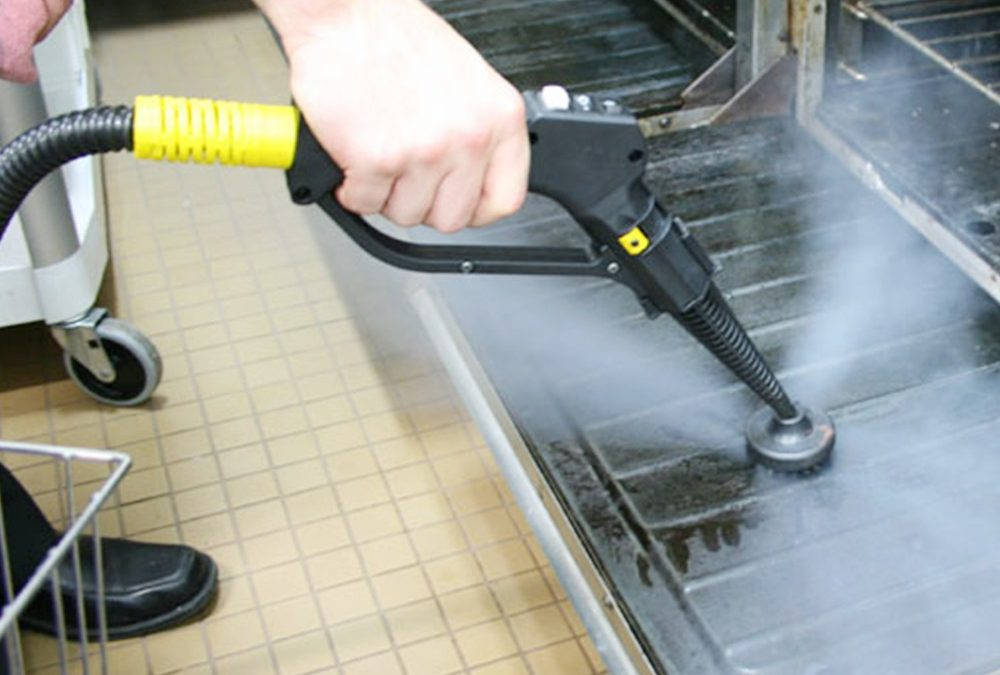 Tips When Buying the Best Steam Cleaner